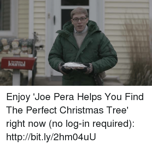 Joe Pera Helps You Find The Perfect Christmas Tree.Lourimul Enjoy Joe Pera Helps You Find The Perfect