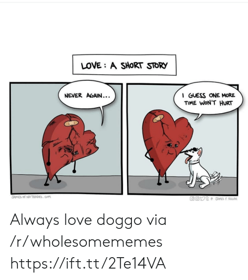 Love, Guess, and Never: LOVE: A SHORT STORY  NEVER AGAIN...  I GUESS ONE MORE  ME WON'T HURT  2  JAMES of №TRADES . COM Always love doggo via /r/wholesomememes https://ift.tt/2Te14VA