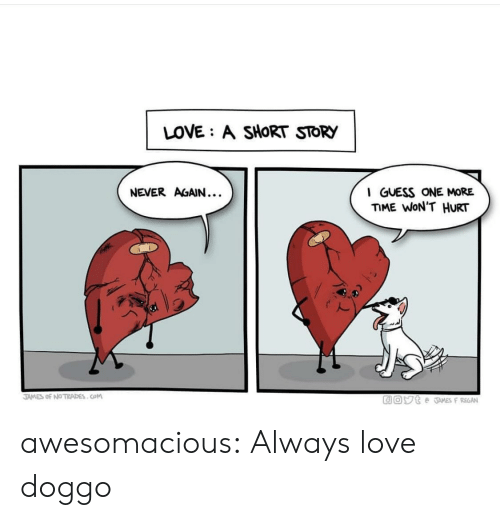 Love, Tumblr, and Blog: LOVE: A SHORT STORY  NEVER AGAIN...  I GUESS ONE MORE  ME WON'T HURT  2  JAMES of №TRADES . COM awesomacious:  Always love doggo