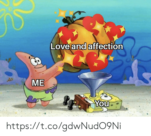 Love, Memes, and 🤖: Love and affection  ME  You https://t.co/gdwNudO9Ni
