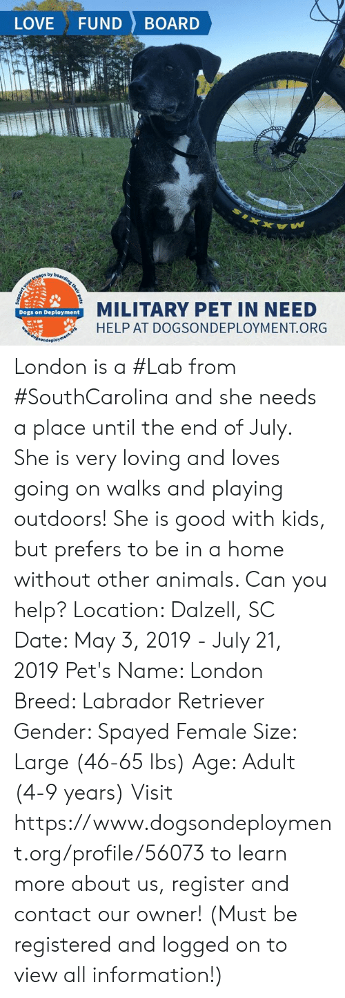 Animals, Dogs, and Love: LOVE FUND BOARD  by  MILITARY PET IN NEED  HELP AT DOGSONDEPLOYMENT.ORG  Dogs on Deployment London is a #Lab from #SouthCarolina and she needs a place until the end of July. She is very loving and loves going on walks and playing outdoors! She is good with kids, but prefers to be in a home without other animals. Can you help?  Location: Dalzell, SC Date: May 3, 2019 - July 21, 2019  Pet's Name: London Breed: Labrador Retriever Gender: Spayed Female Size: Large (46-65 lbs) Age: Adult (4-9 years)   Visit https://www.dogsondeployment.org/profile/56073 to learn more about us, register and contact our owner! (Must be registered and logged on to view all information!)
