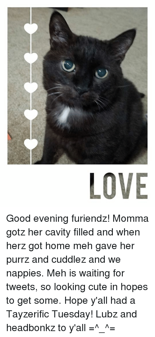 Love Good Evening Furiendz Momma Gotz Her Cavity Filled And When