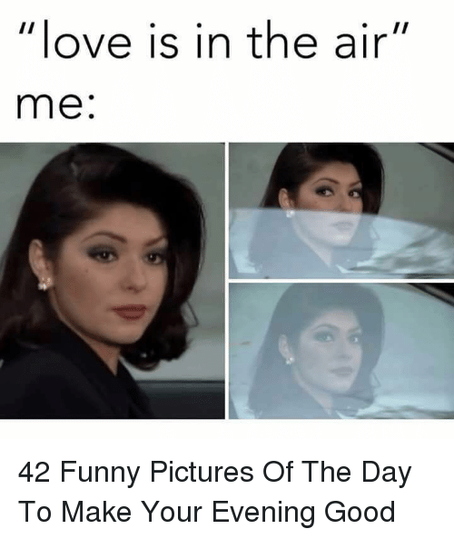 "Funny, Love, and Good: love is in the air""  me: 42 Funny Pictures Of The Day To Make Your Evening Good"