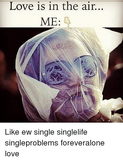 love single life memes