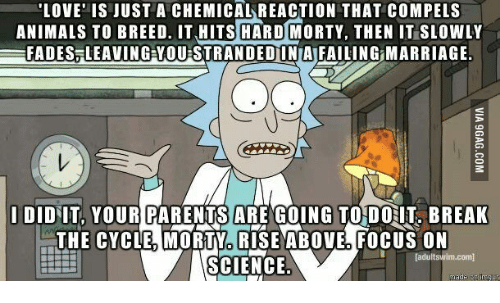 Rick And Morty Quote What People Called Love Rambling Nerd With A Awesome Best Rick And Morty Quotes