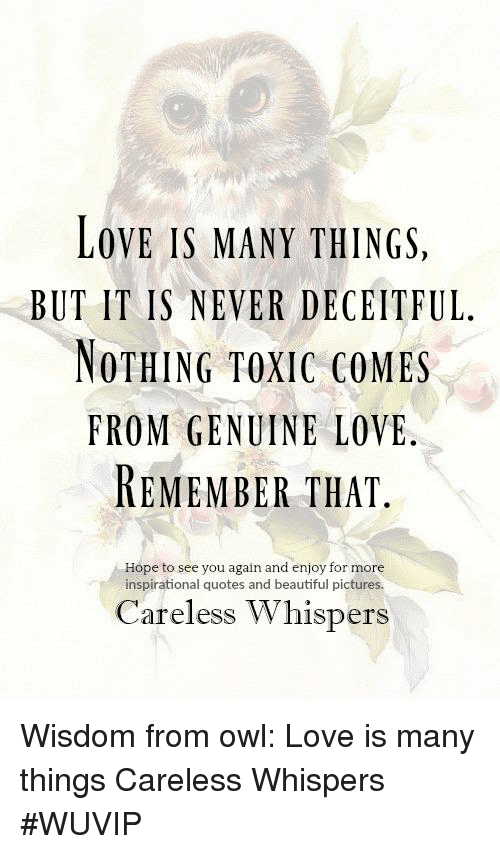 Genuine Love Quotes Gorgeous LOVE IS MANY THINGS BUT IT IS NEVER DECEITFUL NOTHING TOXIC COMES