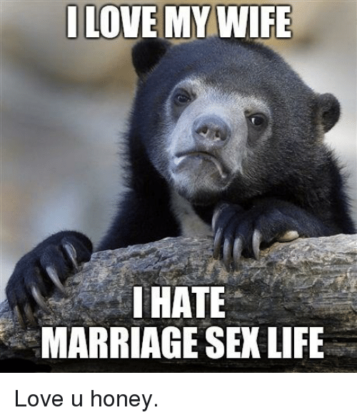 funny life and love love my wife hate marriage sex life