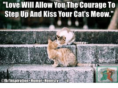"Cats, Love, and Memes: ""Love will Allow You The Courage To  Step Up And Kiss Your Cat's Meow.""  Ofb/Inspiration Humor-Honesty"