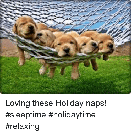 loving these holiday naps sleeptime holidaytime relaxing 11642503 loving these holiday naps!! sleeptime holidaytime relaxing