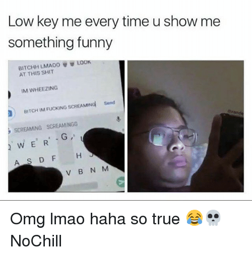 Bitch, Fucking, and Funny: Low key me every time u show me  something funny  BITCHH LMAO。  AT THIS SHIT  LOOK  IM WHEEZING  BITCH IM FUCKING SCREAMINd  Send  SCREAMING SCREAMINGG  WERG  AS DF H  V B N M Omg lmao haha so true 😂💀 NoChill