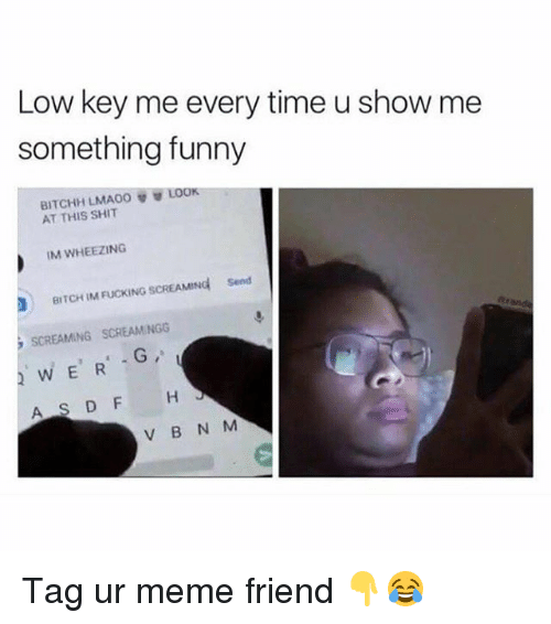 Bitch, Fucking, and Funny: Low key me every time u show me  something funny  LOOK  BITCHH LMAO。  AT THIS SHIT  IM WHEEZING  Send  BITCH IM FUCKING SCREAMING  SCREAMING SCREAMINGG  WERG Tag ur meme friend 👇😂