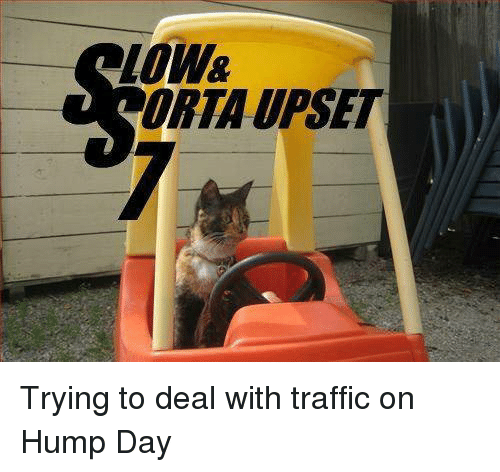 Hump Day, Memes, and Traffic: loW  ORTA UPSET Trying to deal with traffic on Hump Day