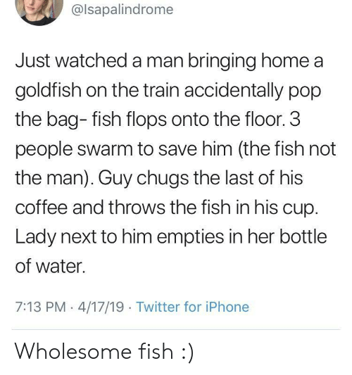 Goldfish, Iphone, and Pop: @lsapalindrome  Just watched a man bringing home a  goldfish on the train accidentally pop  the bag- fish flops onto the floor. 3  people swarm to save him (the fish not  the man). Guy chugs the last of his  coffee and throws the fish in his cup.  Lady next to him empties in her bottle  of water.  7:13 PM 4/17/19 Twitter for iPhone Wholesome fish :)