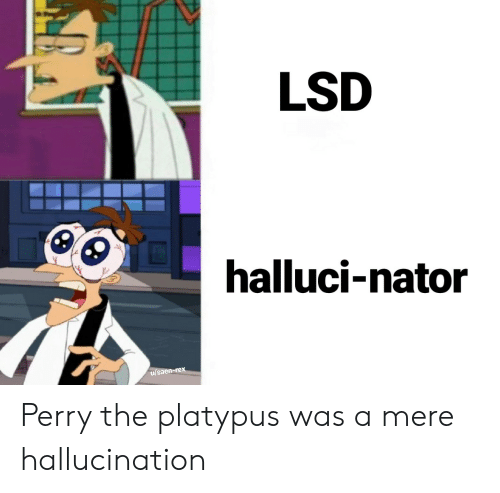Lsd, Platypus, and Hallucination: LSD  halluci-nator  u/saen-rex Perry the platypus was a mere hallucination