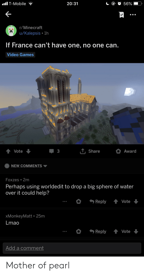 Lmao, Minecraft, and Video Games: lT-Mobile ?  20:31  r/Minecraft  u/Kalepsis 1h  If France can't have one, no one can.  Video Games  T, Share  Award  Vote  3  NEW COMMENTS ▼  Foxzes.2m  Perhaps using worldedit to drop a big sphere of water  over it could help?  xMonkeyMatt 25m  Lmao  Reply ↑ Vote  Add a comment Mother of pearl