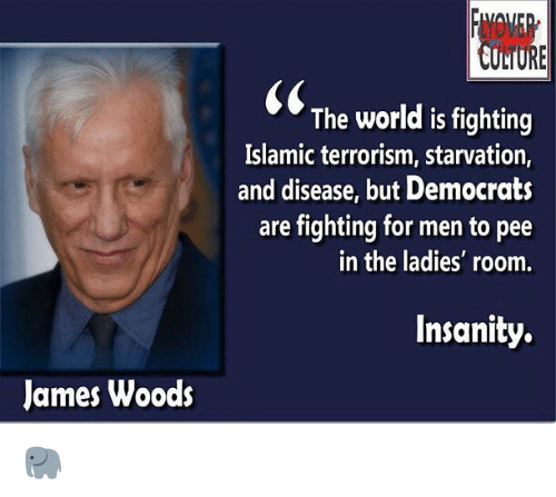 Memes, World, and Insanity: LTURE  The world is fighting  Islamic terrorism, starvation,  and disease, but Democrats  are fighting for men to pee  in the ladies' room  Insanity.  James Woods 🐘