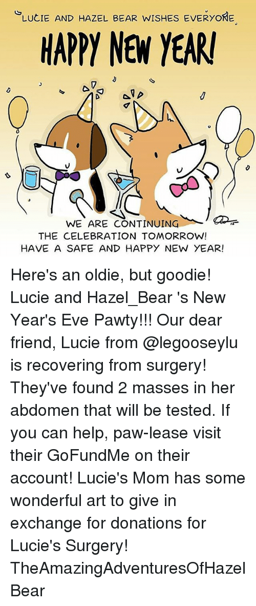 LUCIE AND HAZEL BEAR WISHES EVERYONE HAPPY NEW YEAR WE ARE ...