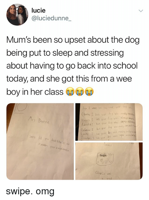 Omg, School, and Wee: lucie  @luciedunne_  Mum's been so upset about tne dog  being put to sleep and stressing  about having to go back into school  today, and she got this from a wee  boy in her class  rs Bunn  deg was super increle  t makes  4o  motion  rlie swipe. omg
