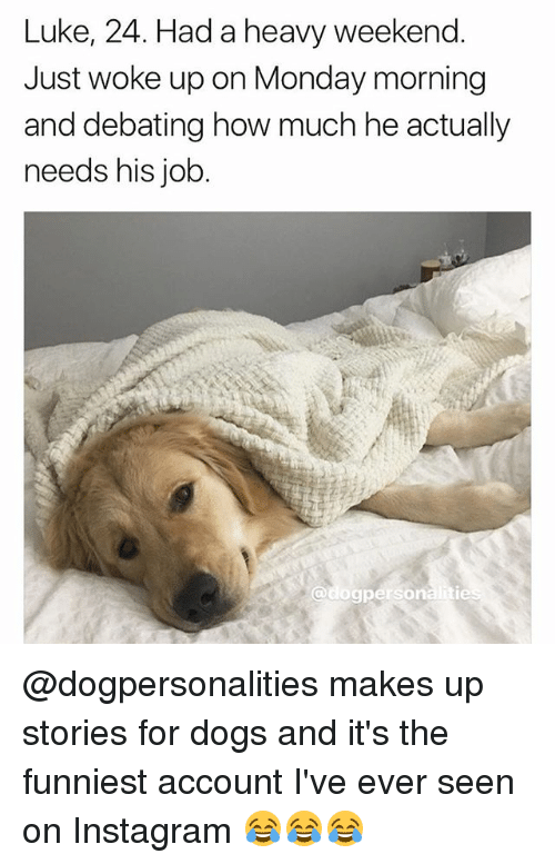 Dogs, Instagram, and Memes: Luke, 24. Had a heavy weekend.  Just woke up on Monday morning  and debating how much he actually  needs his job. @dogpersonalities makes up stories for dogs and it's the funniest account I've ever seen on Instagram 😂😂😂