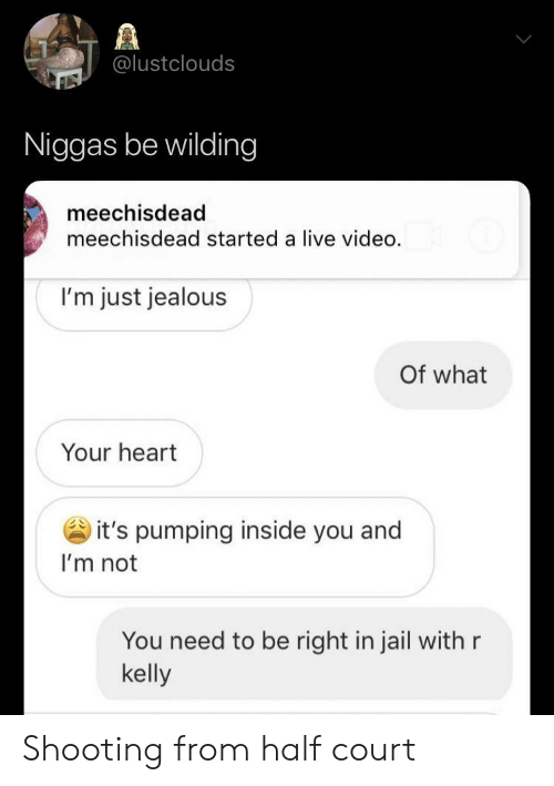 Jail, Jealous, and R. Kelly: @lustclouds  Niggas be wilding  meechisdead  meechisdead started a live video.  I'm just jealous  Of what  Your heart  it's pumping inside you and  I'm not  You need to be right in jail with r  kelly Shooting from half court