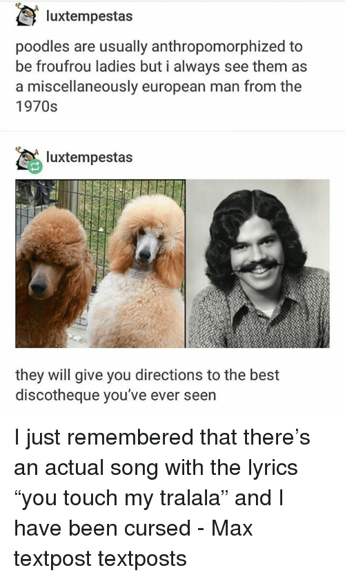 "Memes, Best, and Lyrics: luxtempestas  poodles are usually anthropomorphized to  be froufrou ladies but i always see them as  a miscellaneously european man from the  1970s  luxtempestas  they will give you directions to the best  discotheque you've ever seern I just remembered that there's an actual song with the lyrics ""you touch my tralala"" and I have been cursed - Max textpost textposts"