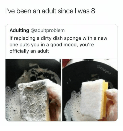 Mood, Dirty, and Dish: l've been an adult since l was 8  Adulting @adultproblem  If replacing a dirty dish sponge with a new  one puts you in a good mood, you're  officially an adult