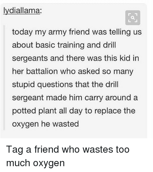 Memes, Too Much, and Army: lydiallama:  today my army friend was telling us  about basic training and drill  sergeants and there was this kid in  her battalion who asked so many  stupid questions that the dril  sergeant made him carry around a  potted plant all day to replace the  oxygen he wasted Tag a friend who wastes too much oxygen