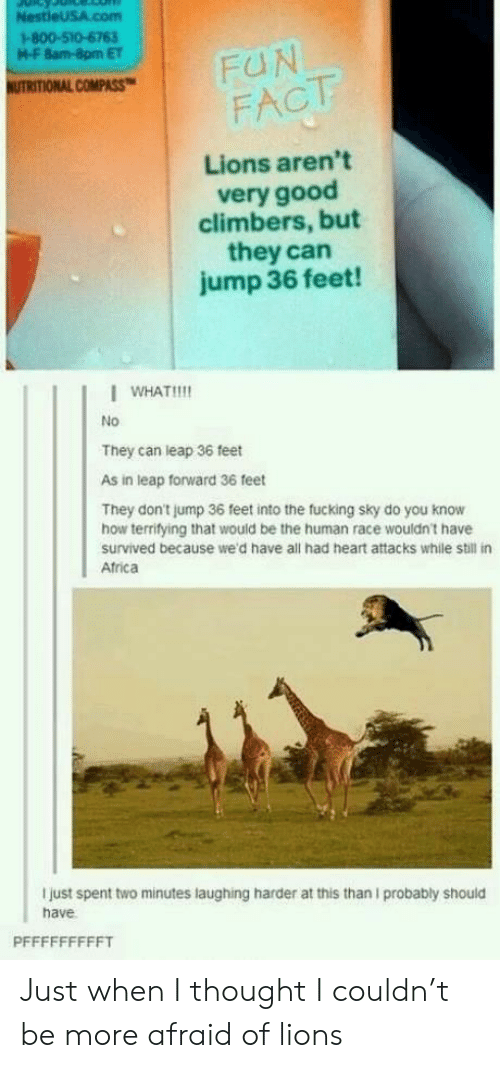 Africa, Fucking, and Good: M-F 8am-8pm ET  UTRITIONAL COMPASS  FACTT  Lions aren't  very good  climbers, but  they can  jump 36 feet!  I WHAT!!!!  No  They can leap 36 feet  As in leap forward 36 feet  They don't jump 36 feet into the fucking sky do you know  how terrifying that would be the human race wouldn't have  survived because we'd have all had heart attacks while still in  Africa  I just spent two minutes laughing harder at this than I probably should  have Just when I thought I couldn't be more afraid of lions