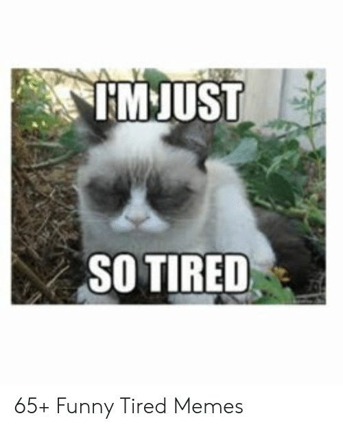 M Just So Tired 65 Funny Tired Memes Funny Meme On Me Me