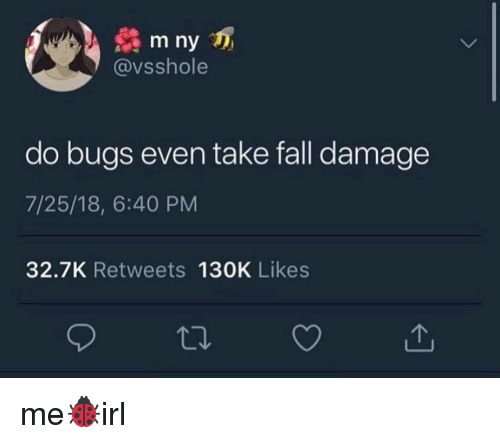 Fall, Damage, and Likes: m ny  @vsshole  do bugs even take fall damage  7/25/18, 6:40 PM  32.7K Retweets 130K Likes  で. me🐞irl