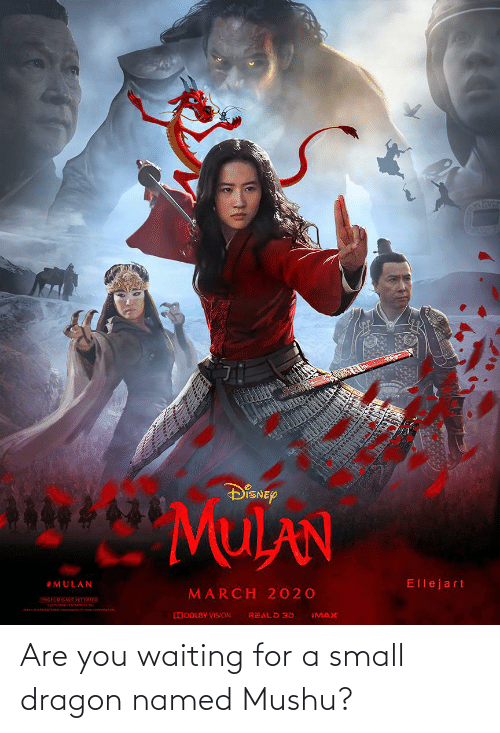 Ma Disnep Mulan Ellejart Mulan March 2020 This Fimis Not Vet Rated Imax Reald 3d Odolby Vision Are You Waiting For A Small Dragon Named Mushu Imax Meme On Me Me