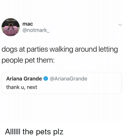 Ariana Grande, Dogs, and Pets: mac  @notmark  dogs at parties walking around letting  people pet them:  Ariana Grande@ArianaGrande  thank u, next Allllll the pets plz