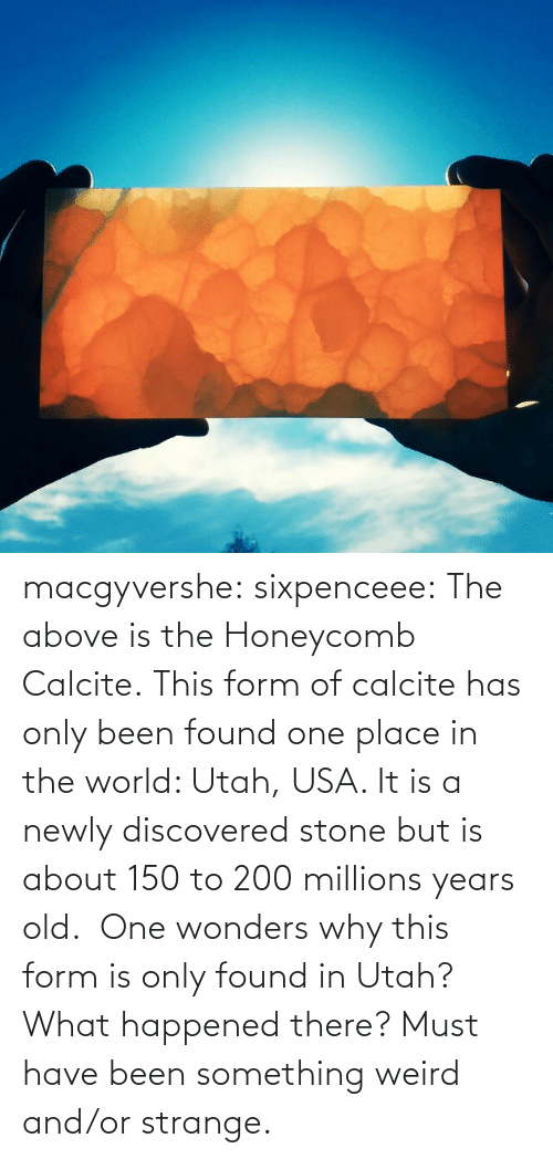 Target, Tumblr, and Weird: macgyvershe: sixpenceee: The above is the Honeycomb Calcite.This form of calcite has only been found one place in the world: Utah, USA. It is a newly discovered stone but is about 150 to 200 millions years old. One wonders why this form is only found in Utah? What happened there? Must have been something weird and/or strange.
