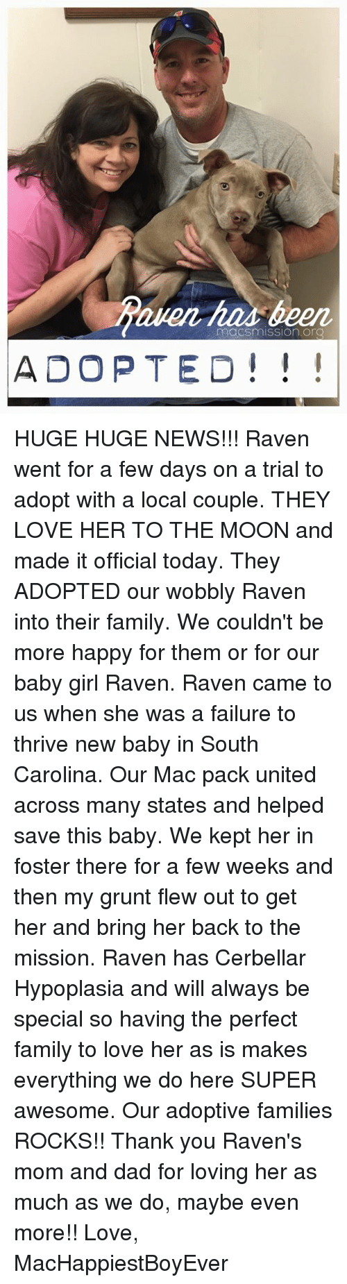Memes, 🤖, and Mac: macsmission.OnQ  ADOPTED HUGE HUGE NEWS!!! Raven went for a few days on a trial to adopt with a local couple. THEY LOVE HER TO THE MOON and made it official today. They ADOPTED our wobbly Raven into their family. We couldn't be more happy for them or for our baby girl Raven. Raven came to us when she was a failure to thrive new baby in South Carolina. Our Mac pack united across many states and helped save this baby. We kept her in foster there for a few weeks and then my grunt flew out to get her and bring her back to the mission. Raven has Cerbellar Hypoplasia and will always be special so having the perfect family to love her as is makes everything we do here SUPER awesome. Our adoptive families ROCKS!! Thank you Raven's mom and dad for loving her as much as we do, maybe even more!!   Love, MacHappiestBoyEver