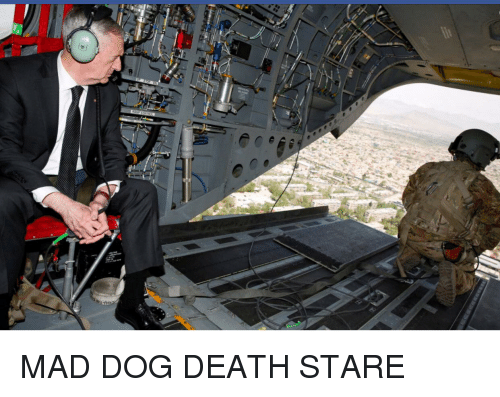 Afghanistan, Death, and Monday: MAD DOG DEATH STARE