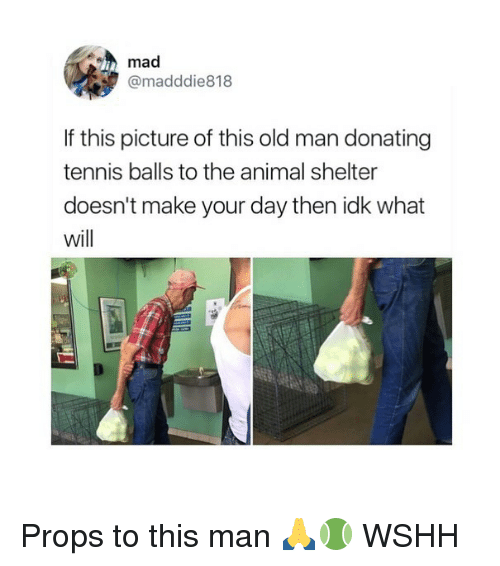 Memes, Old Man, and Wshh: mad  @madddie818  If this picture of this old man donating  tennis balls to the animal shelter  doesn't make your day then idk what  will Props to this man 🙏🎾 WSHH