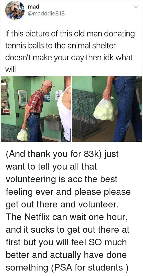Memes, Netflix, and Old Man: mad  @madddie818  If this picture of this old man donating  tennis balls to the animal shelter  doesn't make your day then idk what  will (And thank you for 83k) just want to tell you all that volunteering is acc the best feeling ever and please please get out there and volunteer. The Netflix can wait one hour, and it sucks to get out there at first but you will feel SO much better and actually have done something (PSA for students )
