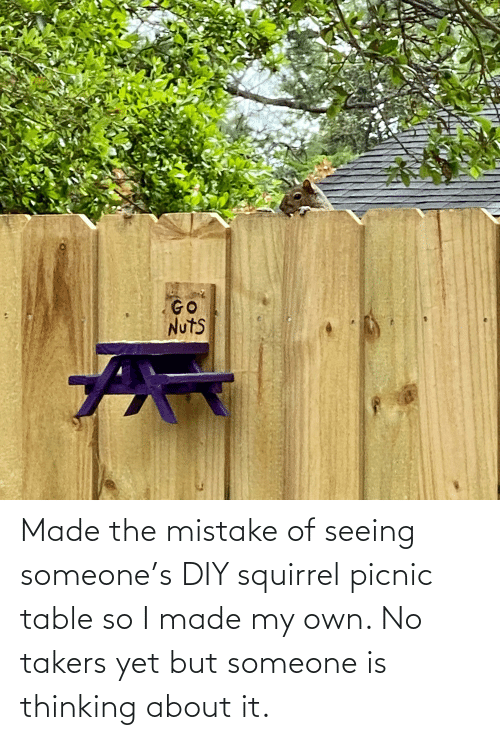 Made The Mistake Of Seeing Someone S Diy Squirrel Picnic Table So I Made My Own No Takers Yet But Someone Is Thinking About It Squirrel Meme On Me Me