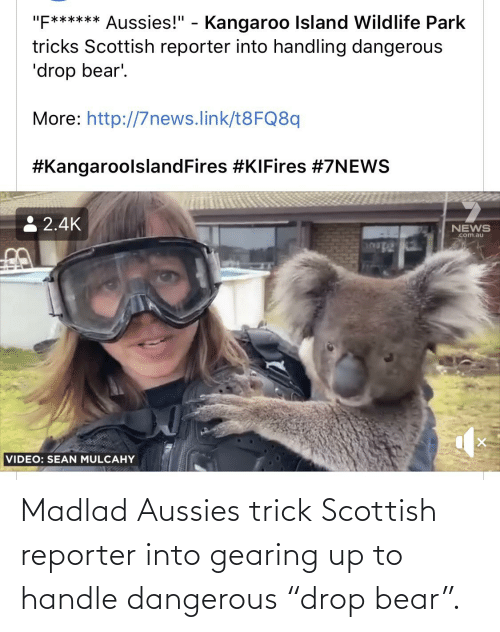 """Bear, Scottish, and Aussies: Madlad Aussies trick Scottish reporter into gearing up to handle dangerous """"drop bear""""."""