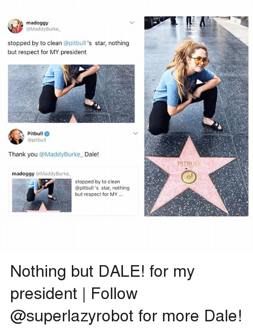 Respect, Pitbull, and Thank You: madoggy  @MaddyBurke  stopped by to clean @pitbull 's star, nothing  but respect for MY president  Pitbull  @pitbull  Thank you @MaddyBurke Dale!  PITR  madoggy @MaddyBurke  stopped by to clean  @pitbull 's star, nothing  but respect for MY.. Nothing but DALE! for my president | Follow @superlazyrobot for more Dale!