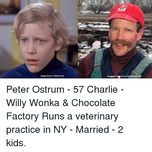 Memes Peter Ostrum And Willy Wonka Mage Source DailyActor Imagasouro9