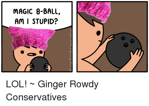 Lol, Memes, and Magic: MAGIC 8-BALL,  Am I STUPID? LOL! ~ Ginger  Rowdy Conservatives