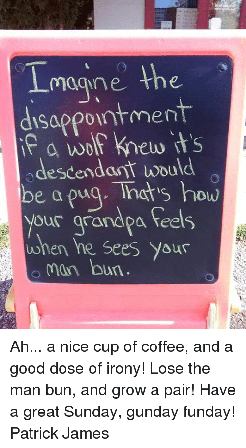 Man Bun, Memes, and Coffee: magne the  disappointment  a wolf knew its  odescendant would  be a puq. Tnats how  your arandpa feels  when he Sees Yous  man bun Ah... a nice cup of coffee, and a good dose of irony! Lose the man bun, and grow a pair! Have a great Sunday, gunday funday! Patrick James