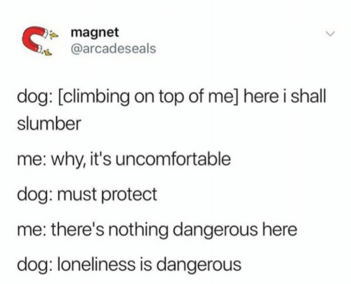 Climbing, Loneliness, and Dog: magnet  @arcadeseals  dog: [climbing on top of me] here i shall  slumber  me: why, it's uncomfortable  dog: must protect  me: there's nothing dangerous here  dog: loneliness is dangerous