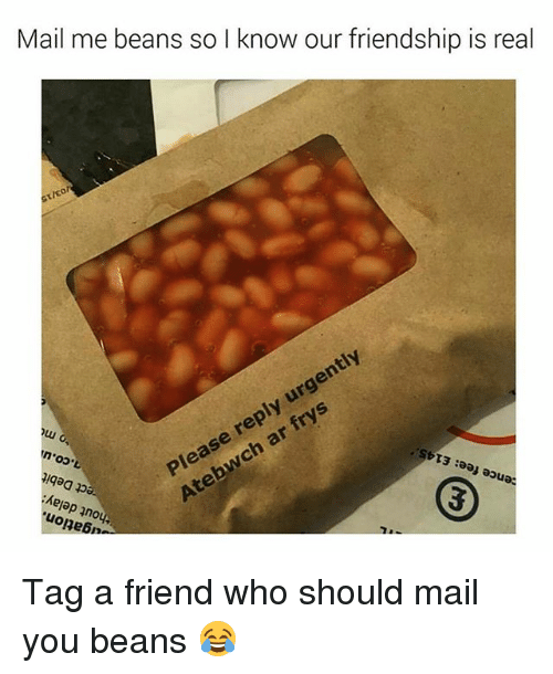 Memes, Frys, and Mail: Mail me beans so I know our friendship is real  St/co  ently  Please reply urg  ch ar frys  qaa ppa  Kejap no  uolnebn Tag a friend who should mail you beans 😂