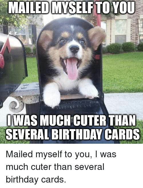 Birthday You And Cards MAILED MYSELF TOYOU WAS MUCH CUTER THAN SEVERAL