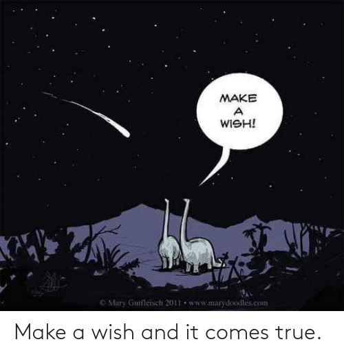 make-a-wish-and-it-comes-true-72574213.png