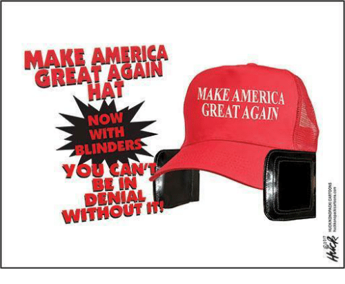 MAKE AMERICA HAT NOW WITH LINDER WITHOUT MAKE AMERICA GREAT AGAIN ... 9c64dc2600f