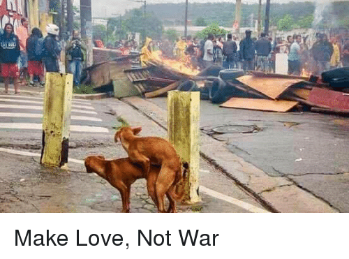 Funny Memes About Making Love : Make love not war funny meme on me.me