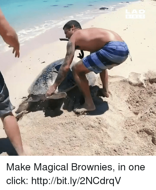 Click, Memes, and Http: Make Magical Brownies, in one click: http://bit.ly/2NCdrqV
